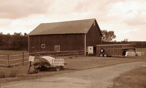 Barn Poster featuring the photograph Firewood For Sale by Rhonda Barrett