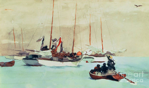 Boat Poster featuring the painting Schooners At Anchor In Key West by Winslow Homer