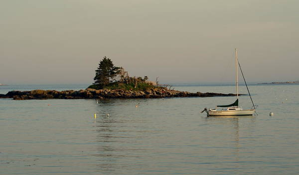 Island Poster featuring the photograph Tranquility by Lois Lepisto