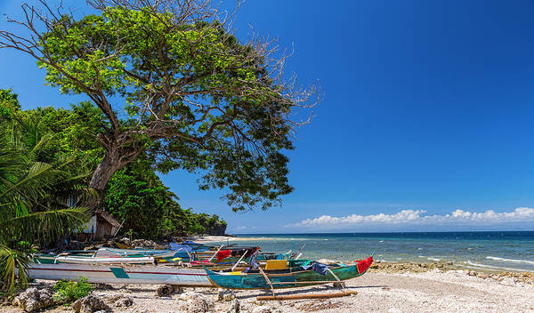 Beach Poster featuring the photograph Tropical Island Panorama Paradise by James BO Insogna