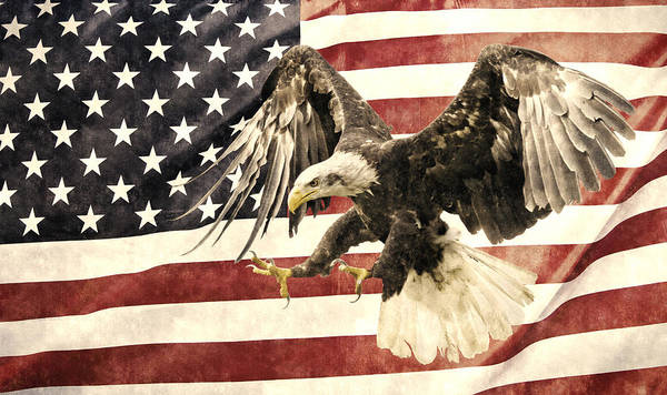 Vintage Poster featuring the photograph Vintage Flag With Eagle by Scott Carruthers