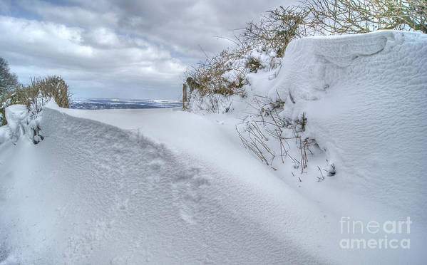 Snow Poster featuring the photograph Drift 20 by David Birchall