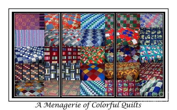 Quilts Poster featuring the digital art A Menagerie Of Colorful Quilts Triptych by Barbara Griffin
