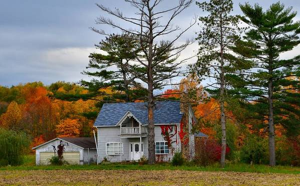 Autumn Scenes Poster featuring the photograph Country Cottage In Autumn by Julie Dant