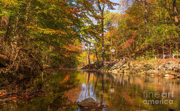 Fall Poster featuring the photograph Fall At Valley Creek by Rima Biswas