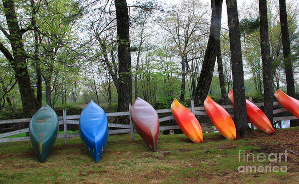 Maine Poster featuring the photograph Kayaks Waiting by Michael Mooney