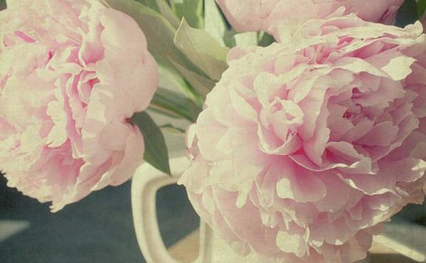 Horizontal Poster featuring the photograph Peonies by Gigi Thibodeau