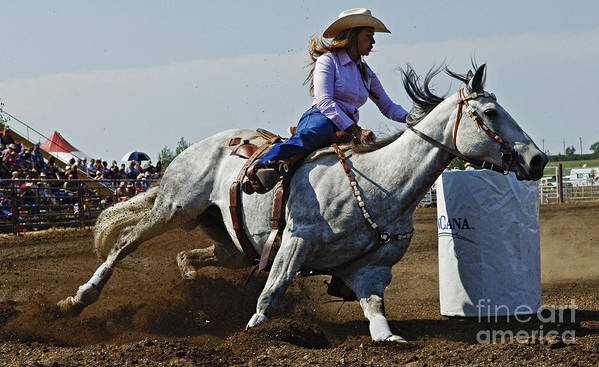 Rodeo Poster featuring the photograph Rodeo Barrel Racer by Bob Christopher
