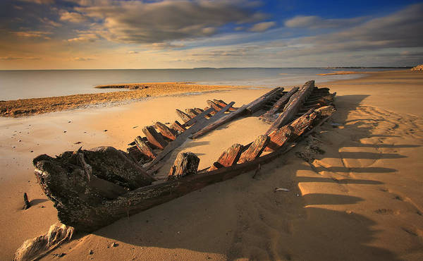 Shipwreck Poster featuring the photograph Shipwreck On Cape Cod Beach by Dapixara Art