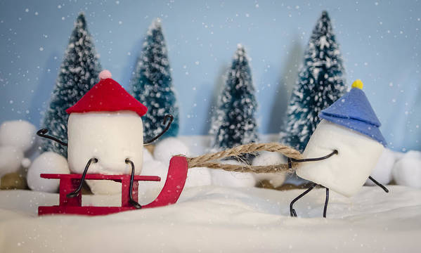 Sleigh Poster featuring the photograph Sweet Sleigh Ride by Heather Applegate