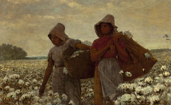 The Cotton Pickers Poster featuring the digital art The Cotton Pickers by Winslow Homer