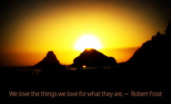 Sunset Poster featuring the photograph We Love The Things We Love by Kathy Sampson