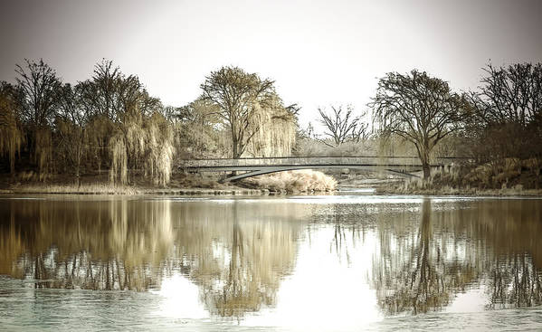Landscape Poster featuring the photograph Winter Reflection Landscape by Julie Palencia