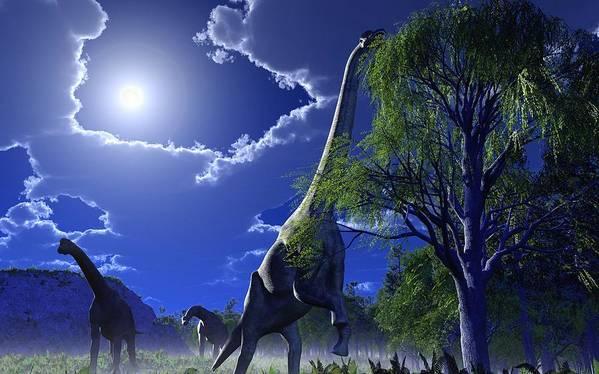 Brachiosaurus Poster featuring the photograph Brachiosaurus Dinosaurs, Artwork by Roger Harris