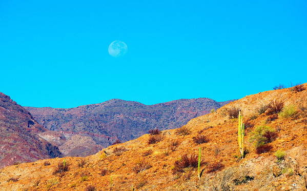 Sea Of Cortez Poster featuring the photograph Morning Moon In Baja by Russ Harris