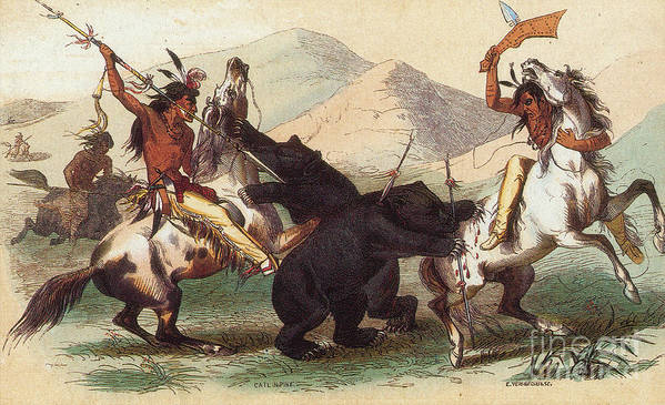 History Poster featuring the photograph Native American Indian Bear Hunt, 19th by Photo Researchers