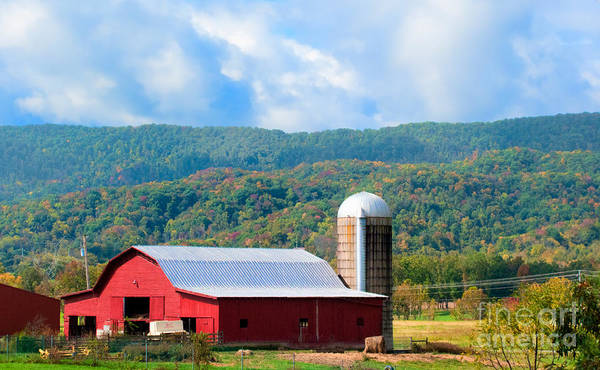 Barn Poster featuring the photograph Smokie Mountain Barn by Betty LaRue