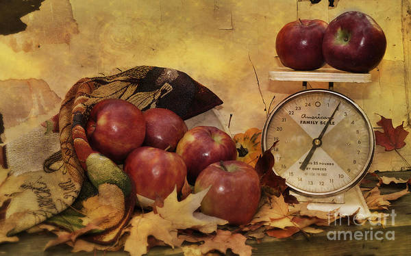 Autumn Poster featuring the photograph By The Pound by Kathy Jennings