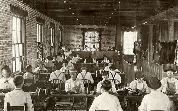1909 Poster featuring the photograph Cigar Factory, 1909 by Granger