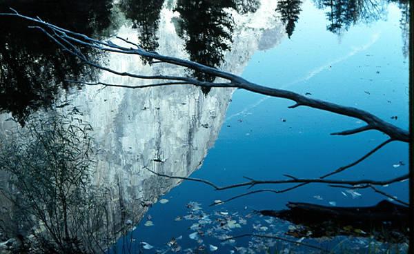 El Capitian Poster featuring the photograph El Cap Reflects by Chris Gudger