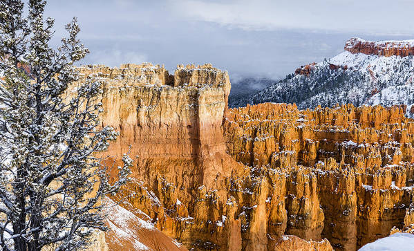 Canyons Poster featuring the photograph Fresh Snow At Bryce by Bob Camp
