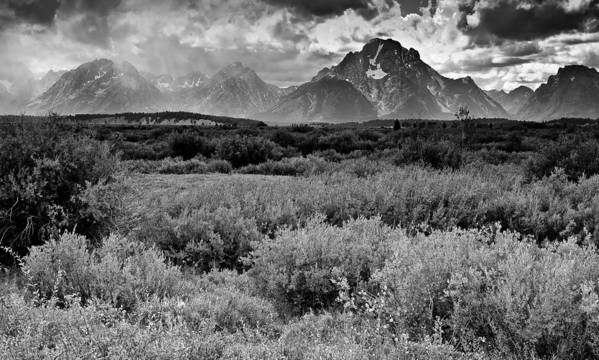 Mountains Poster featuring the photograph Grand Tetons by Patrick Flynn