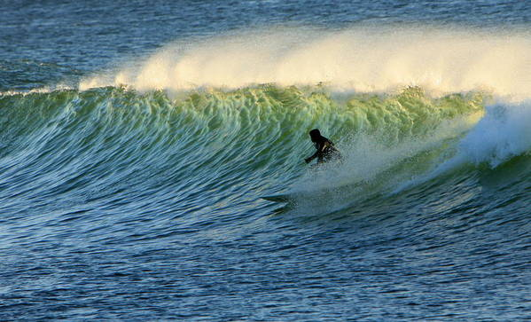 Surf Poster featuring the photograph Green Wall Surfer by Mike Coverdale