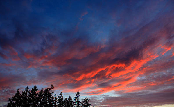 Clouds Poster featuring the photograph June Sunset by Nick Gustafson