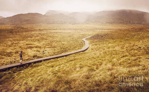Cradle Mountain Poster featuring the photograph Man On Expedition Along Cradle Mountain Boardwalk by Jorgo Photography - Wall Art Gallery