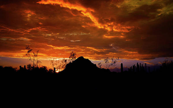 Arizona Poster featuring the photograph Monsoon Sunset by Saija Lehtonen