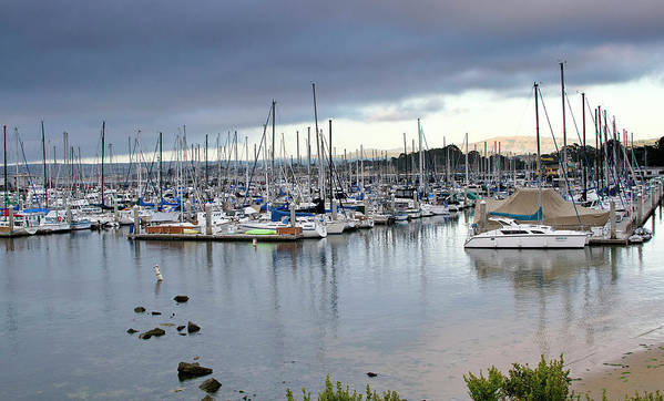 monterey Bay Poster featuring the photograph Monterey Harbor - California by Brendan Reals