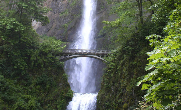 Waterfall Poster featuring the photograph Multnomah Falls Wf1051a by Mary Gaines