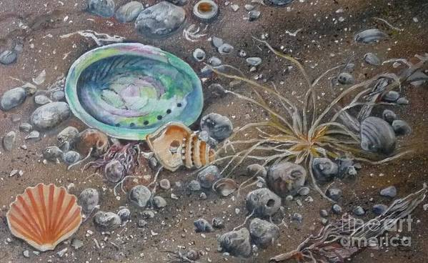 Paua Or Abalone Shell Poster featuring the painting Seashore Treasures by Val Stokes