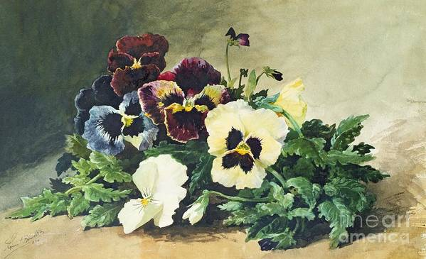 Winter Poster featuring the painting Winter Pansies by Louis Bombled