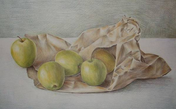 Drawing Poster featuring the drawing Apples In A Paper Bag by Jubamo