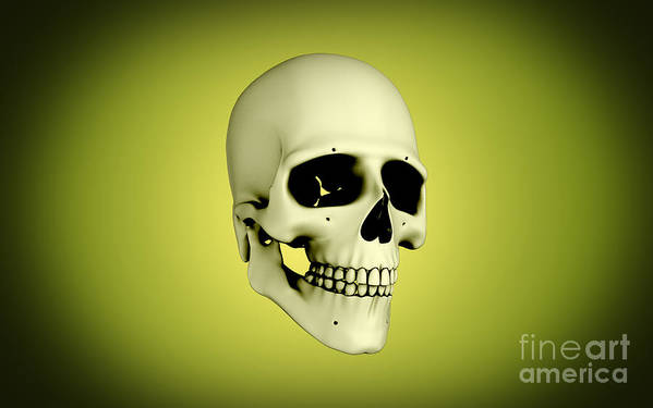 Horizontal Poster featuring the digital art Conceptual View Of Human Skull by Stocktrek Images