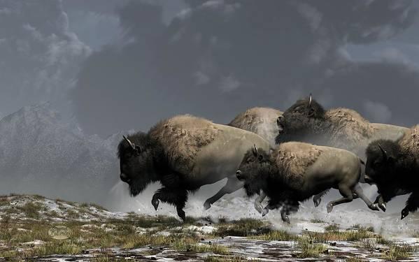 Bison Poster featuring the digital art Bison Stampede by Daniel Eskridge