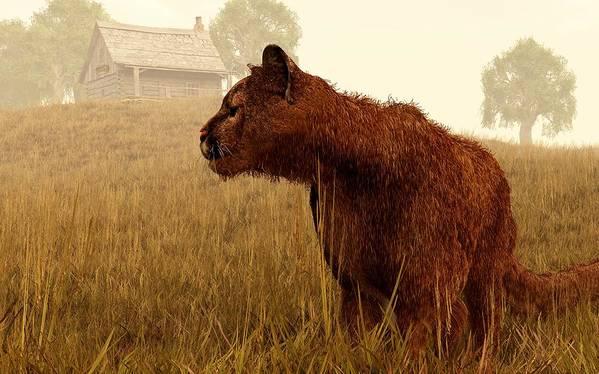 Cougar Poster featuring the digital art Cougar In A Field by Daniel Eskridge