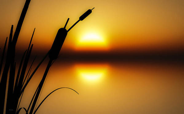 Tranquil Poster featuring the photograph Peaceful Dawn by Bob Orsillo