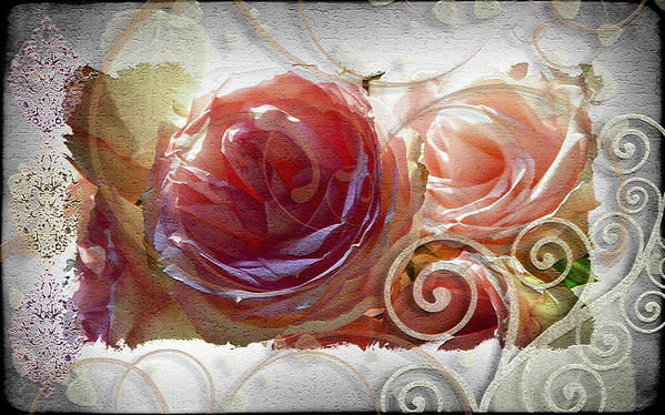 Roses Poster featuring the photograph Flourish by Sandra Sigfusson