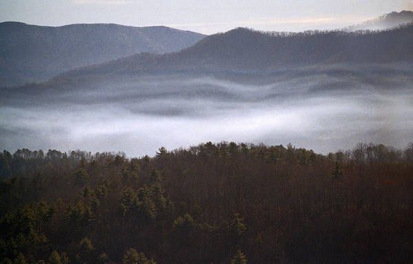 Tn Poster featuring the photograph It's The Smokies Folks by Skip Willits
