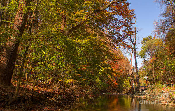 Fall Poster featuring the photograph Valley Creek by Rima Biswas