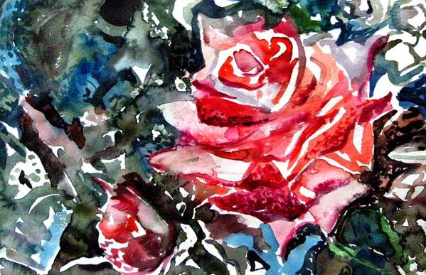 Rose Poster featuring the drawing The Rose by Mindy Newman