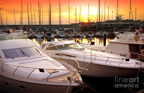 Anchor Poster featuring the photograph Yacht Marina by Carlos Caetano