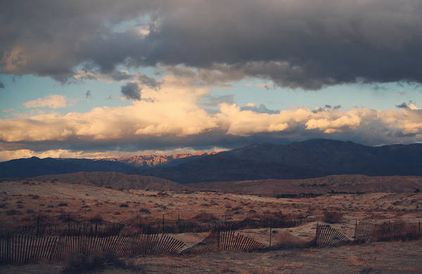 Palm Desert Poster featuring the photograph A Light In The Distance by Laurie Search