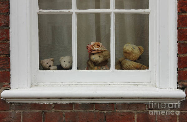 Teddy Poster featuring the photograph Family Of Teddy Bears On The Window. by Kiril Stanchev