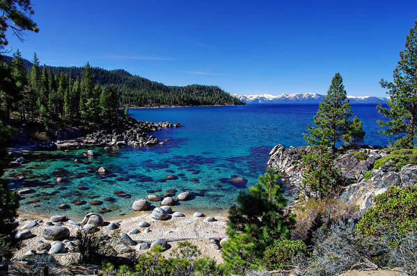 Blue Sky Poster featuring the photograph Lake Tahoe Springscape by Scott McGuire