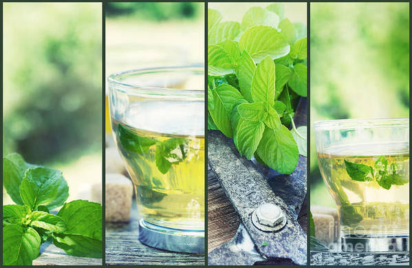 Background Poster featuring the photograph Mint Tea Collage by Mythja Photography