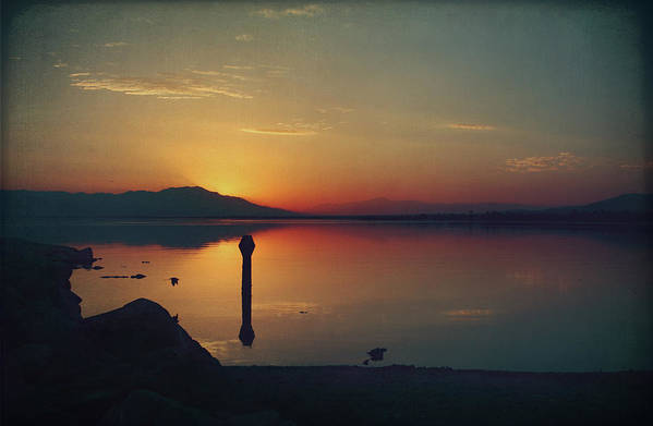 Salton Sea Poster featuring the photograph The End Of Another Day Without You by Laurie Search