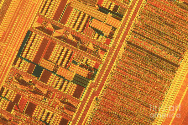 Silicon Poster featuring the photograph Pentium Computer Chip by Michael W. Davidson